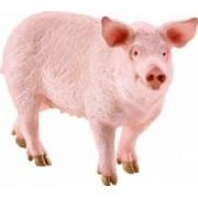 Figurina Schleich Pig