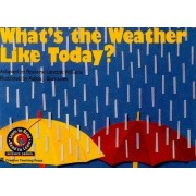 What's the Weather Like Today? by Rozanne Lanczak Williams