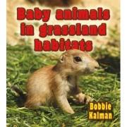 Baby Animals in Grassland Habitats by Bobbie Kalman