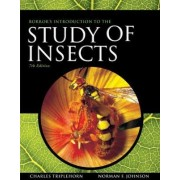 Borror and DeLong's Introduction to the Study of Insects by Norman Johnson