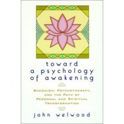 Towards a Psychology of Awakening by John Welwood