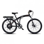 Mountain E-Bike Prodeco Phantom X2