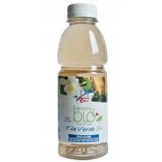 Ice Tea Ceai verde bio (indulcit cu suc de struguri, fara gluten) 500 ml