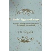 Birds' Eggs and Nests - A Simple Guide to Identify the Nests of Common British Birds by S. N. Sedgwick