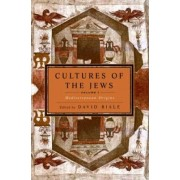 Cultures of the Jews: v. 1 by David Biale