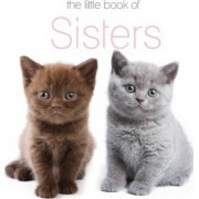 The Little Book of Sisters by The Next Big Think