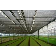 Plasa de umbrire AGRI 40, solarii 3 m