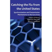 Catching the Flu from the United States: Synchronisation and Transmission Mechanisms to the Euro Area