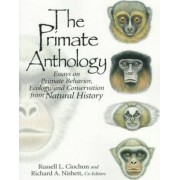 The Primate Anthology by Russell L. Ciochon