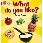 Collins Big Cat: What Do You Like?: Band 02B/Red B by Anna Owen