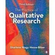 The Practice of Qualitative Research by Sharlene Nagy Hesse-Biber
