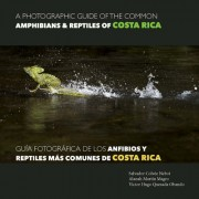 A Photographic Guide of the Common Amphibians & Reptiles of Costa Rica/ Guia Fotografica de Los Anfibios y Reptiles Mas Comunes de Costa Rica