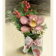 Orhidee cadou de Craciun