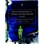 Social Perspectives on Lesbian and Gay Studies by Peter M. Nardi