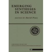 Emerging Syntheses in Science by David Pines