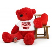Red 5 feet Big Teddy Bear wearing a Will You Marry Me T-shirt