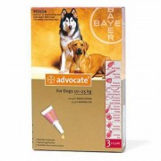 Advocate Spot On 250 For Large Dogs 10-25 Kg 3 Doses