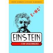 Einstein for Beginners by Joseph Schwartz