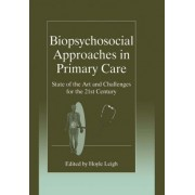 Biopsychosocial Approaches in Primary Care - State of the Art and Challenges for the 21st Century by Hoyle Leigh