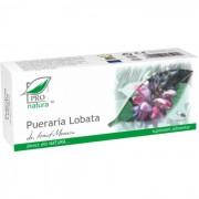Pueraria Lobata, 30 capsule
