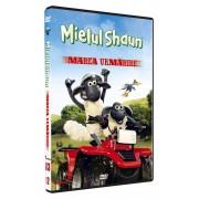 Mielul Shaun - Marea urmarire (DVD)
