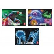 Caiet biologie Pigna, 24 file