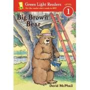 Big Brown Bear by David McPhail