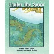 Under the Snow by Melissa Stewart
