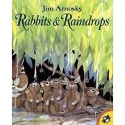 Rabbits and Raindrops by Jim Arnosky