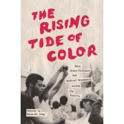 The Rising Tide of Color by Moon-Ho Jung