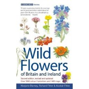 Wild Flowers of Britain and Ireland by Marjorie Blamey
