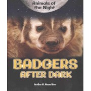 Badgers After Dark by Heather Moore Niver