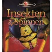 Insider Wissen - Insekten & Spinnen