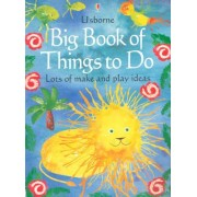 Big Book of Things to Do by Gibson, Ray