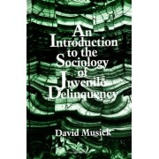 An Introduction to the Sociology of Juvenile Delinquency by David Musick