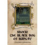 Shock! The Black Dog of Bungay by David Waldron
