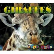 Giraffes by Jill Anderson