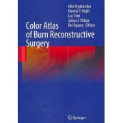 Color Atlas of Burn Reconstructive Surgery by Hiko Hyakusoku