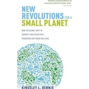New Revolutions for a Small Planet by Kingsley L. Dennis