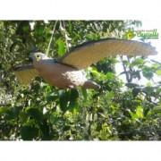 Sperietoare Șoim impermeabil cu avengură a aripilor de 54 cm de alungare a păsărilor (prombei, vrăbii, ciocănitori, mierle, mîncători de albine) și a rozătoarelor (șoareci, șobolani, veverițe) și a iepurilor
