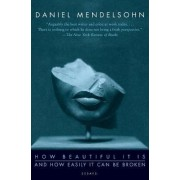 How Beautiful It Is And How Easily It Can Be Broken by Daniel Mendelsohn
