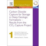 Carbon Dioxide Capture for Storage in Deep GeologicFormulations: Capture and Separation of Carbon Dioxide from Combustion Sources v. 1