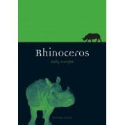 Rhinoceros by Kelly Enright