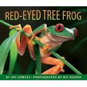 Red-Eyed Tree Frog by Nic Bishop