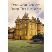 Drop What You Are Doing This Is Heaven by Greg Belter