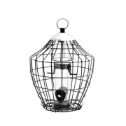 Nature's Feast Royal Squirrel Proof Seed Feeder