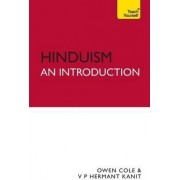 Hinduism - An Introduction: Teach Yourself by Owen Cole