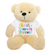 Peach 2 feet Big Teddy Bear wearing a Best Friends Forever T-shirt