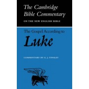 The Gospel According to Luke by E.J. Tinsley