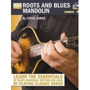 Roots and Blues Mandolin by Steve James